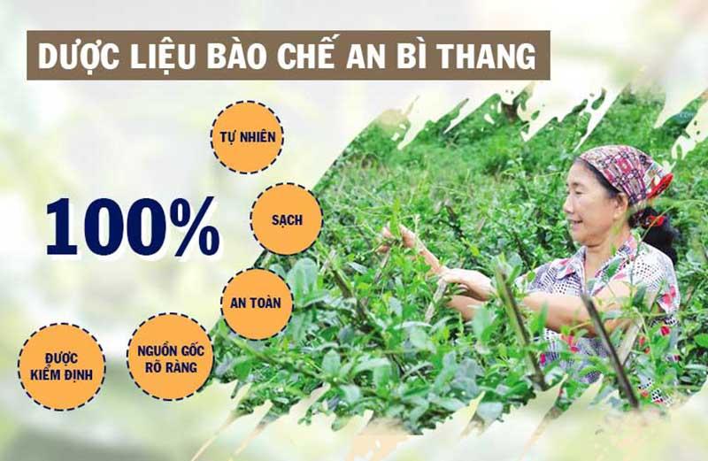 Dược liệu An Bì Thang được nuôi trồng và thu hái tại các vườn chuyên canh đạt chuẩn quốc tế GACP-WHO