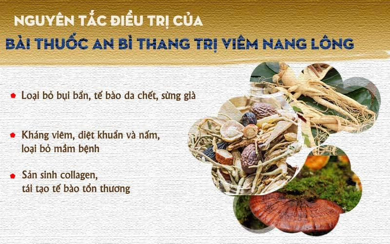 Nguyên tắc điều trị viêm nang lông của bài thuốc An Bì Thang