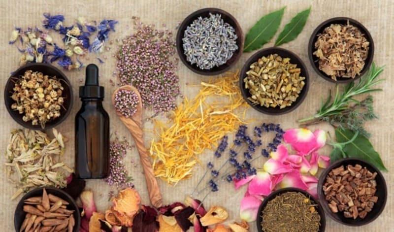 Thuốc Đông Y thường được sử dụng để chữa đau dạ dày cấp hoặc mãn tính