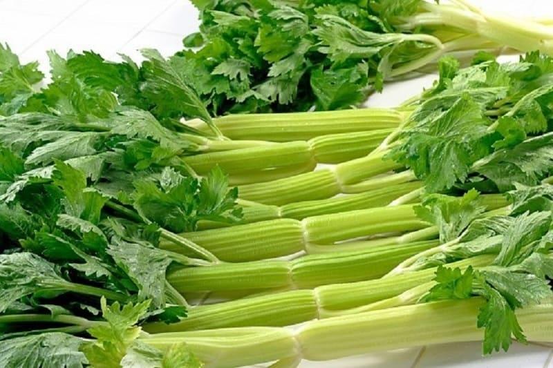 Cần tây một loại thực phẩm tốt cho dạ dày có thể chế biến nhiều món ăn