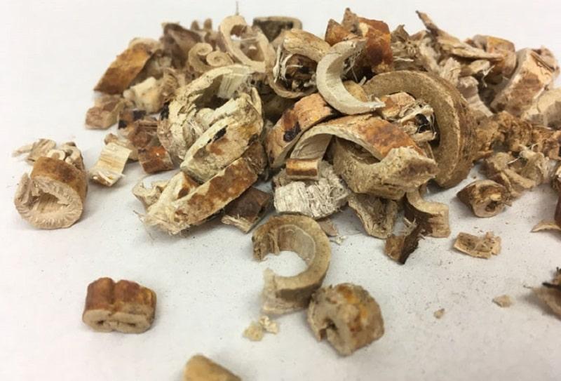Nguyên liệu tang bạch bì trong bài thuốc Đông y trị amidan ở mức độ nặng