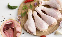 Viêm amidan có được ăn thịt gà không