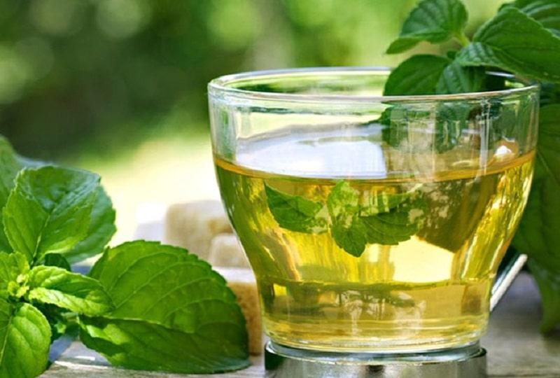 Để chữa viêm amidan, trà bạc hà cũng là lựa chọn tốt cho nhiều người bệnh