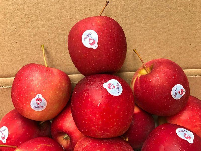 Quả táo hỗ trợ tiêu hóa, giảm đau thế nào?