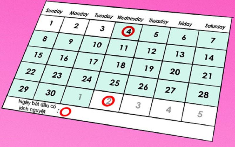 Thông thường nếu chu kỳ kinh nguyệt kéo dài 26-32 ngày, thì ngày thứ 8-19 là khoảng thời gian nữ giới dễ thụ thai.