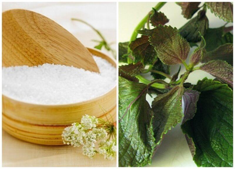 Lá tía tô chứa nhiều hợp chất có công dụng diệt khuẩn, tiêu viêm cho các nốt mụn