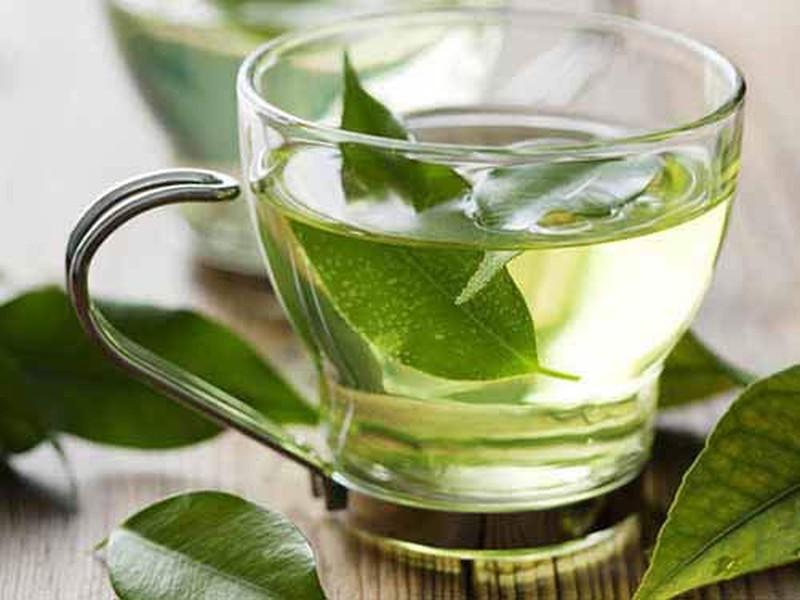 Lá trà xanh giúp kháng khuẩn, sát trùng cho da, ngăn ngừa mụn cám