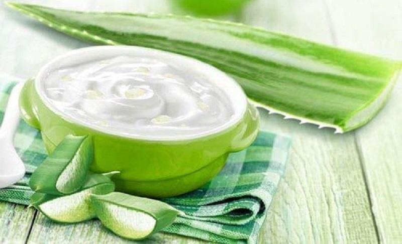 Cách trị nám bằng nha đam kết hợp sữa chua giúp da mịn màng hơn