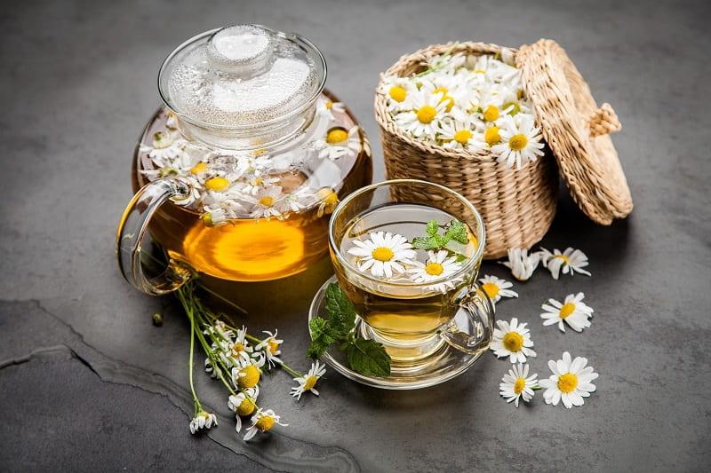 Dùng trà hoa cúc trị bệnh tại nhà