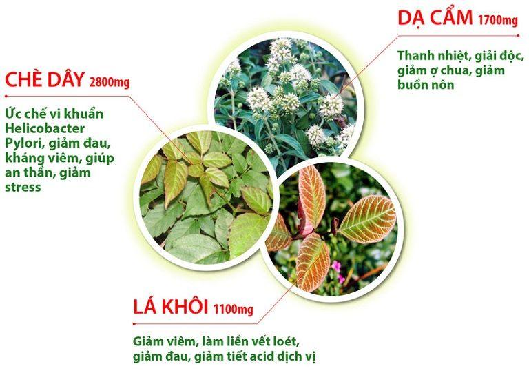 Công dụng đặc trị bệnh đau dạ dày của ba vị thuốc