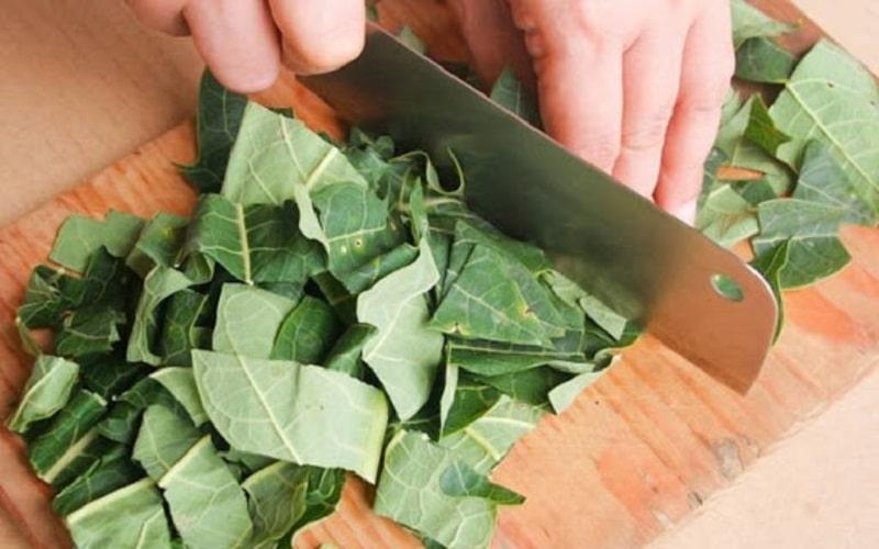 Người bệnh có thể đắp lá đu đủ trị viêm da hàng ngày