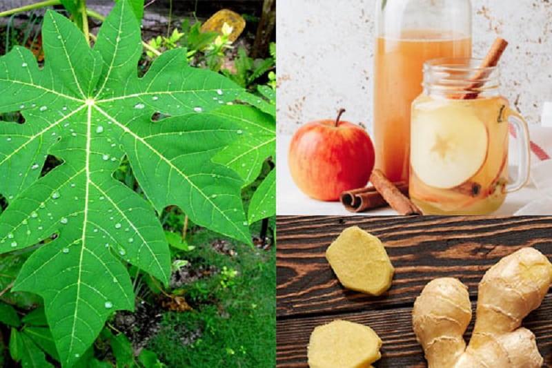 Kết hợp lá đu đủ với gừng và giấm táo