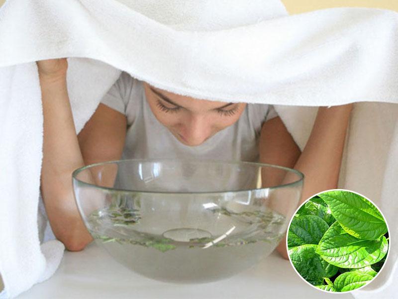 Sử dụng nước lá lốt để xông hơi