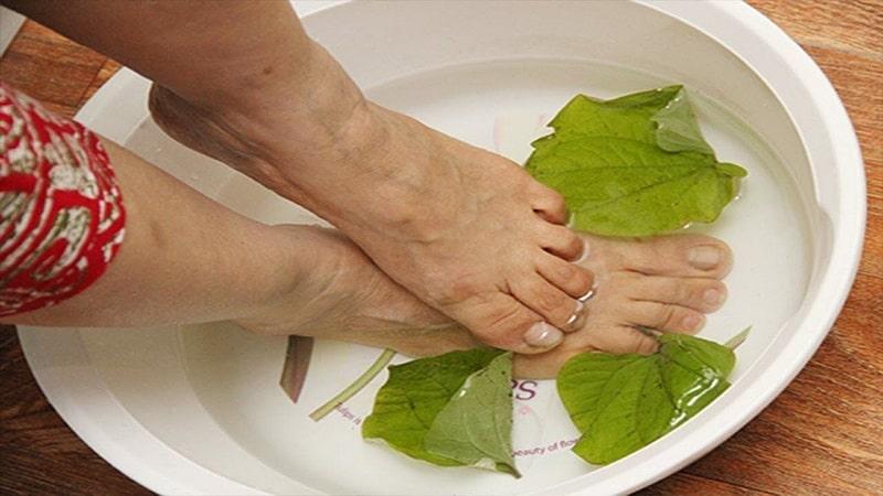 Nước lá lốt cũng có thể dùng để tắm và ngâm rửa ngoài da rất tốt