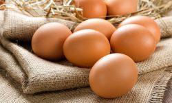 Chữa xuất tinh sớm bằng trứng gà là giải pháp hiệu quả được nhiều quý ông áp dụng