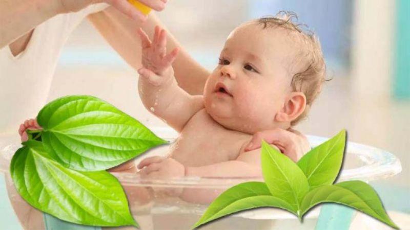 Áp dụng một số mẹo dân gian giảm ngứa, mẩn đỏ cho con trẻ