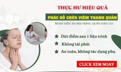 Hiệu quả của phác đồ điều trị viêm thanh quản tại Bệnh viện Tai mũi họng Quân Dân 102