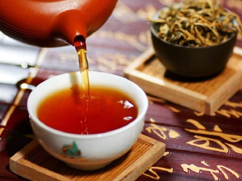 Uống trà lá đơn đỏ hàng ngày giúp giảm bệnh hiệu quả