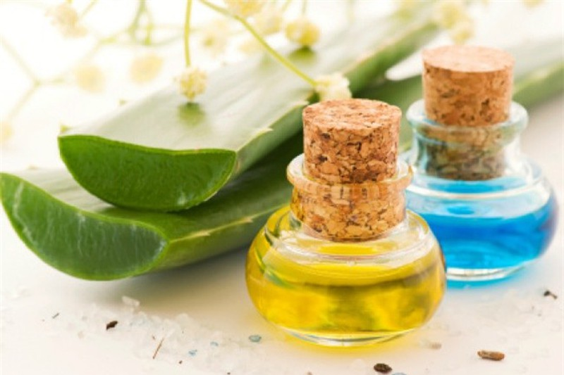 Nha đam có tác dụng thu nhỏ lỗ chân lông và dưỡng ẩm cho da