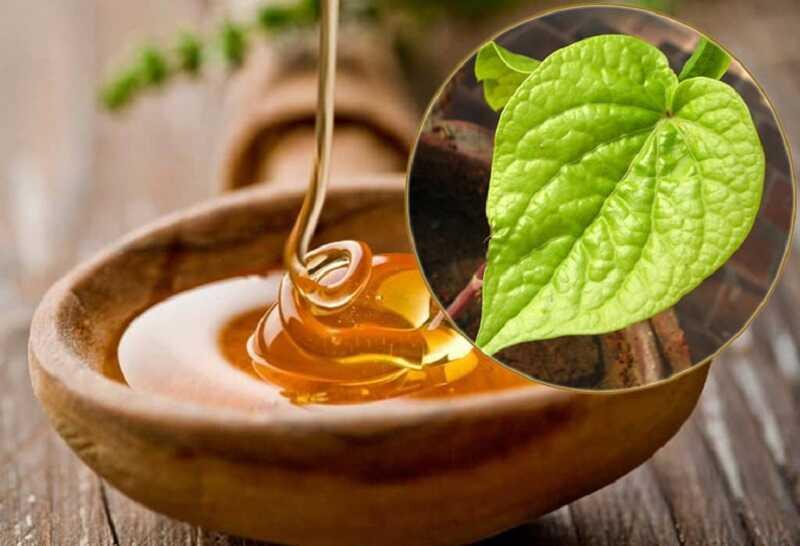 Các thành phần của mật ong sẽ dưỡng da trở nên trắng sáng, mịn màng