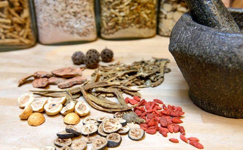 Các bài thuốc Đông y đem lại hiệu quả trị bệnh tích cực
