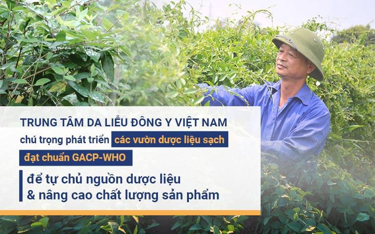 Viện Da liễu Hà Nội - Sài Gòn luôn chú trọng phát triển dược liệu sạch để đảm bảo chất lượng sản phẩm