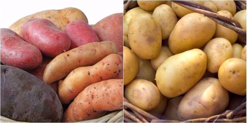 Khoai tây, khoai lang rất tốt cho người bệnh
