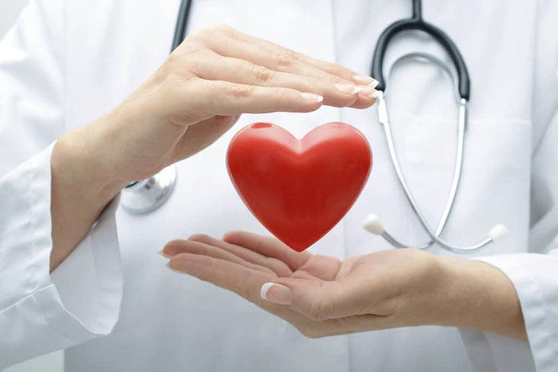 Sử dụng thực phẩm chức năng bồi bổ cho hệ tim mạch là giải pháp được rất nhiều người tin dùng